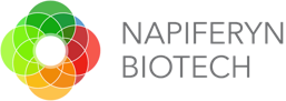 Napiferyn